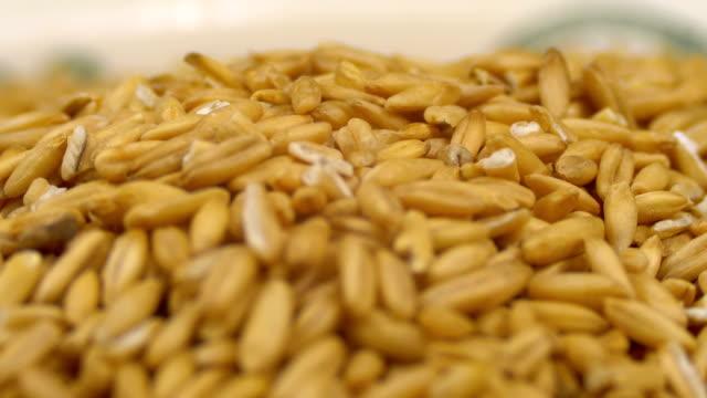 körner von raw oat groats rotieren auf einer weißen platte nahaufnahme - vollkorn stock-videos und b-roll-filmmaterial