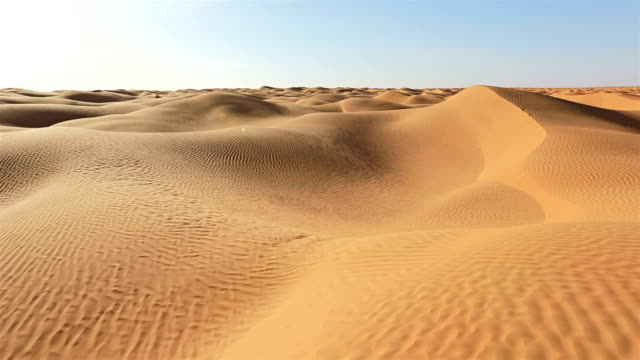 Grand Erg Oriental / Sahara desert of Tunisia