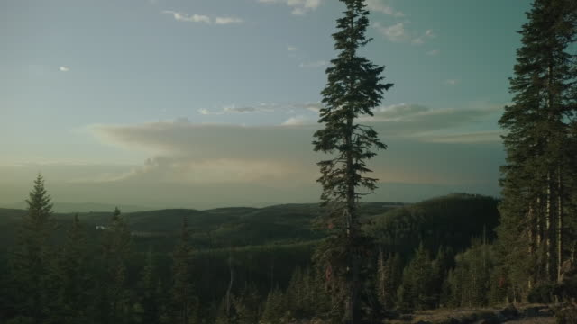 vídeos y material grabado en eventos de stock de grand mesa national forest late evening sunset forest fire smoke on horizon 4k video series - conífera