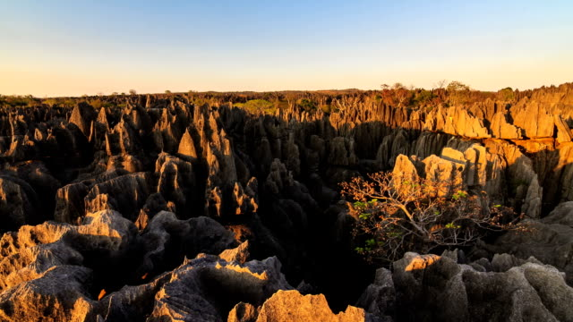 Grand Tsingy sunset timelapse Beautiful Full HD timelapse of the unique landscape at the Tsingy de Bemaraha Strict Nature Reserve in Madagascar at sunset madagascar stock videos & royalty-free footage