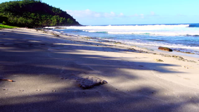 grande anse beach - reunion island - reunion stock videos and b-roll footage