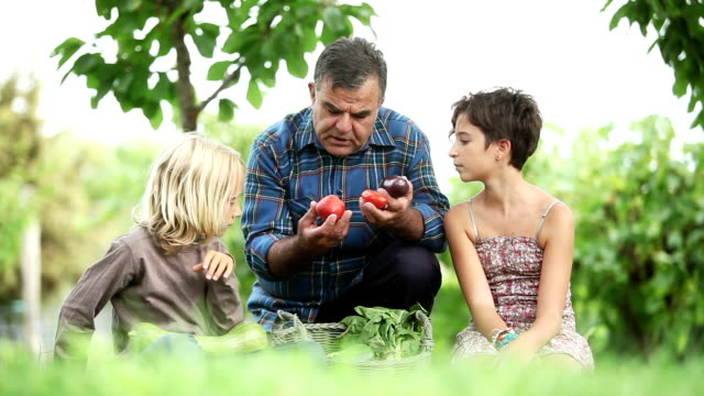 Grandfather and children: explaining agricultural products video