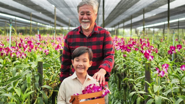 Grandfather and grandchild enjoying in the garden with orchid flowers.
