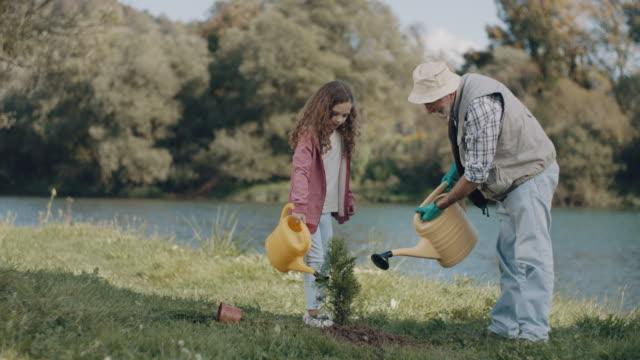 Großvater und Enkelin wässern eine Pflanze – Video