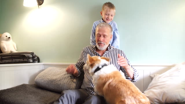 vídeos de stock e filmes b-roll de grandfather and grandson with dog sitting at couch in room - future hug