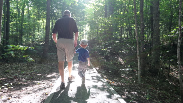 grandfather and son exploring forest on hiking trail - grandparents stock videos & royalty-free footage