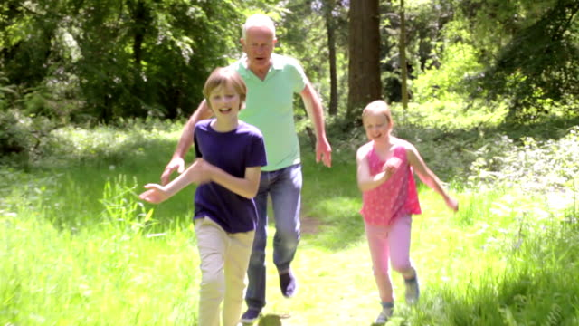 Grandfather Chasing Grandchildren Along Woodland Path video