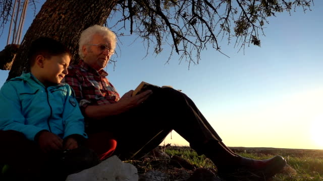 Grandfather reading story book with happy grandson video