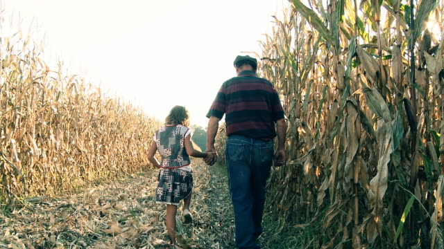 HD DOLLY: Grandfather With His Granddaughter In Corn Field HD1080p: DOLLY shot of a grandfather holding his grand daughter for a hand and walking along corn field while sun rays coming through the corncobs. The clip was color graded to achieve a special film look. granddaughter stock videos & royalty-free footage