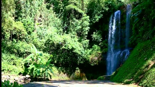 Grandiose waterfall in jungle. video