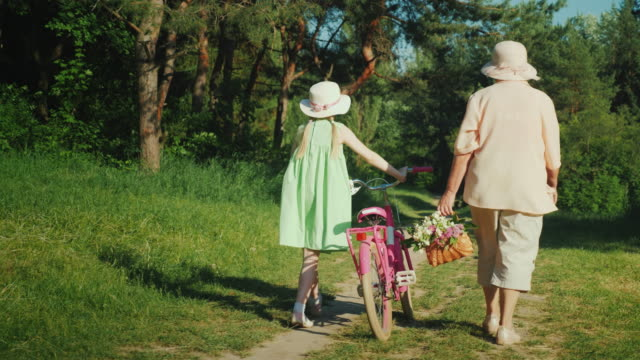 Grandma is walking with her granddaughter. The girl drives a bicycle, the grandmother carries a basket with wild flowers. Active seniors concept Grandma is walking with her granddaughter. The girl drives a bicycle, the grandmother carries a basket with wild flowers. Active seniors concept. Steadicam shot granddaughter stock videos & royalty-free footage