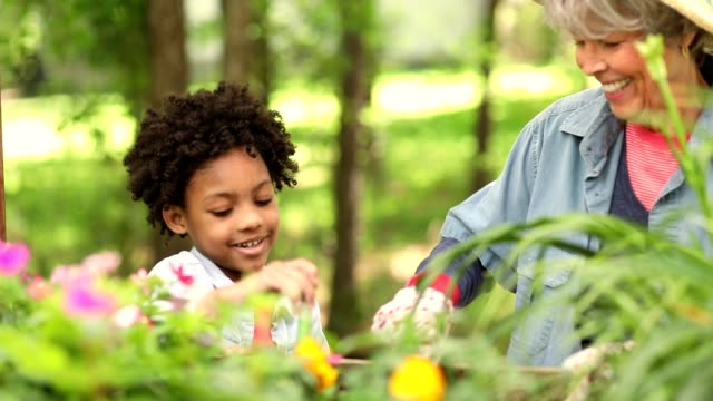 Grandmother and child gardening outdoors in spring. video