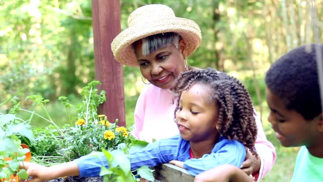 Grandmother and children gardening outdoors in spring. video