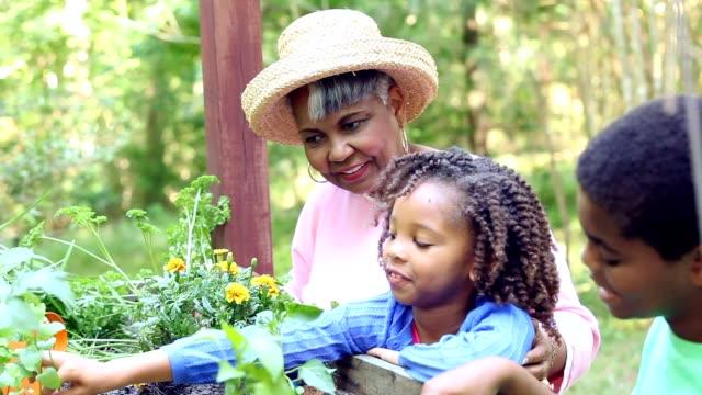Abuela y niños jardinería al aire libre en primavera. - vídeo