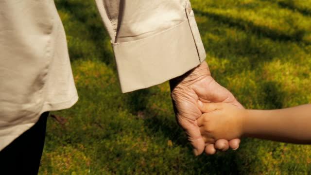 grandmother holds the child's hand. - nonna e nipote camminare video stock e b–roll
