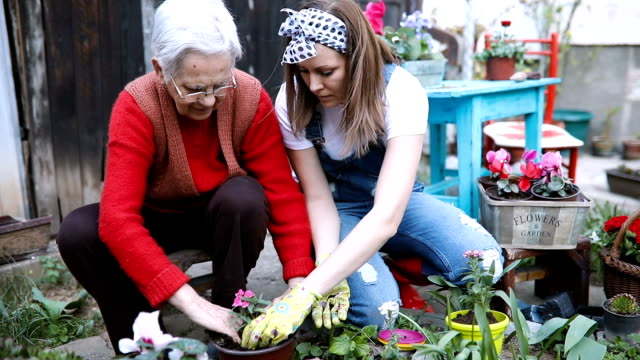 Grandmother with her granddaughter working in the garden video
