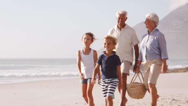 grandparents and grandchildren walking along beach carrying picnic basket - nonna e nipote camminare video stock e b–roll