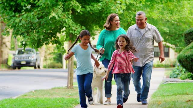 grandparents and granddaughters walking dog along street - жилой район стоковые видео и кадры b-roll