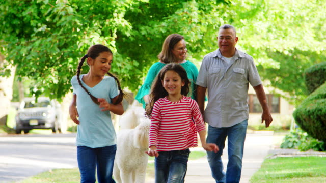 grandparents and granddaughters walking dog along street - nonna e nipote camminare video stock e b–roll