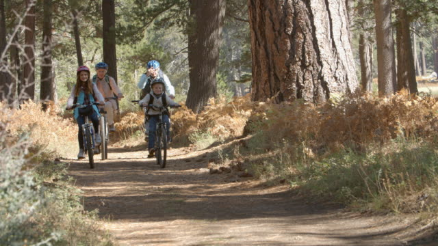 Grandparents and kids riding bikes in forest, front view video