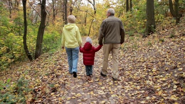 grandparents with grandchild in autumn park - nonna e nipote camminare video stock e b–roll