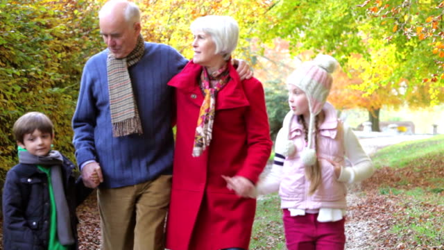 nonni con nipoti camminare lungo il percorso autunno - nonna e nipote camminare video stock e b–roll