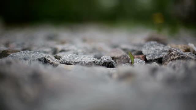 Granite gravel video