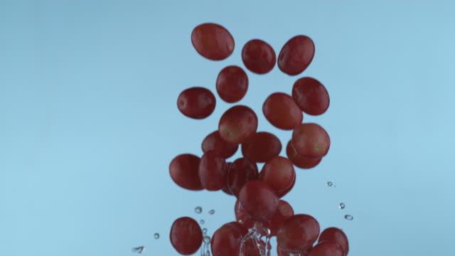 vídeos de stock e filmes b-roll de grapes flying in slow motion - grapes