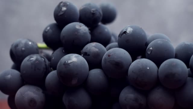 vídeos de stock e filmes b-roll de grapes on a red wooden table and dark-blue background. close up macro view. - grapes