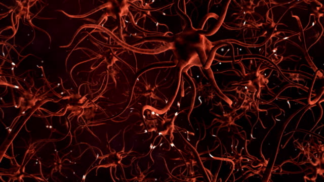 CG Graphic of Neuron Cells video