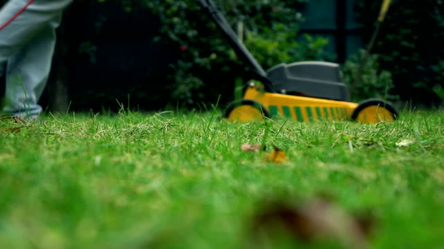 Grass and man with lawnmower. 4K low angle view slow motion shot video