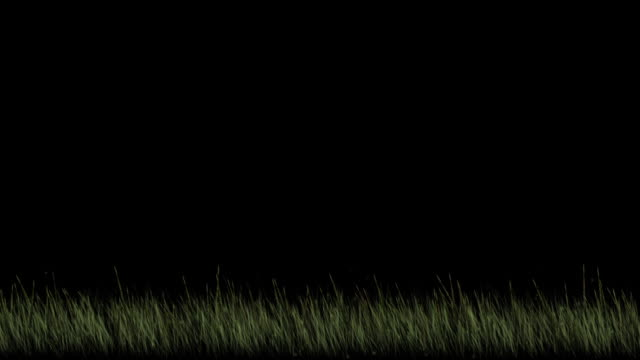 Grass Background Element Looped Alpha Footage Included Stock Video