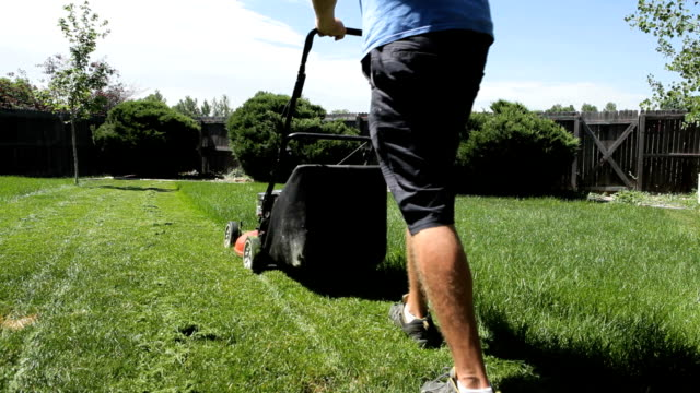 Grass Cutting with Sound video