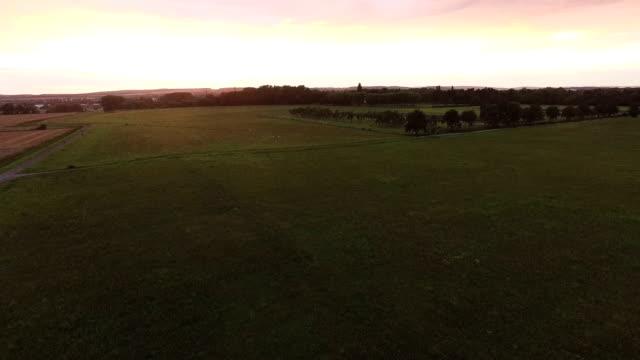 Grass Field Aerial During Sundown video