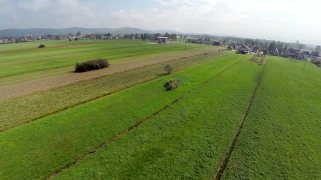 stockvideo's en b-roll-footage met grass field and a single tree - sleeping illustration