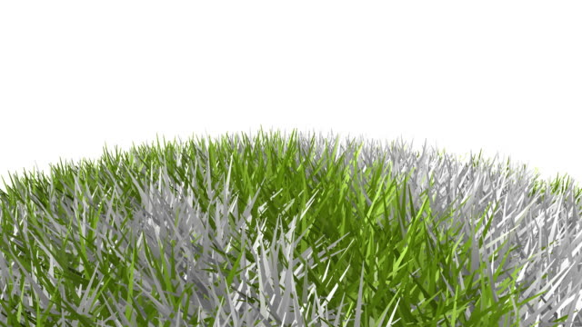 Grass Globe HD   Asia,Africa & Europe video