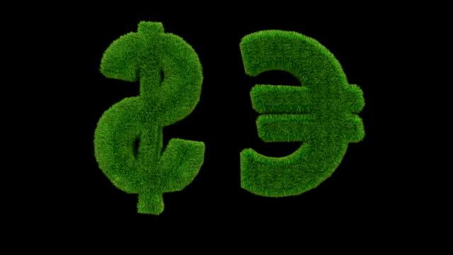 USD EUR erba loop - video