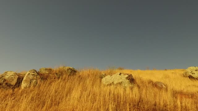 Grass prairie Wild backcountry trails in California dry stock videos & royalty-free footage