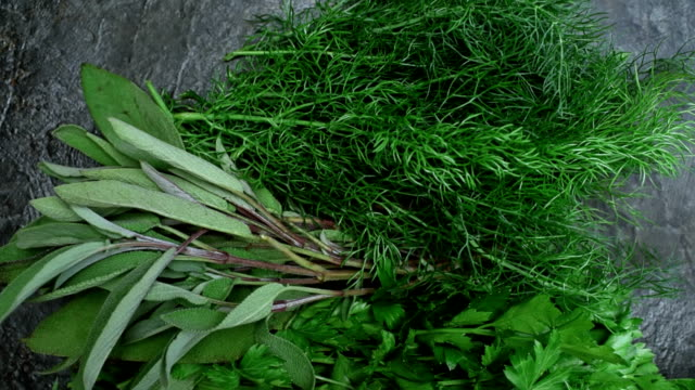 Grass vegetable and herbs over black video