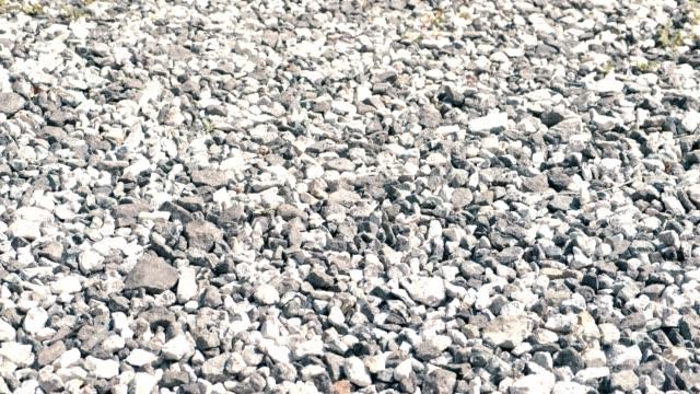 gray pebbles close-up. - ghiaia video stock e b–roll
