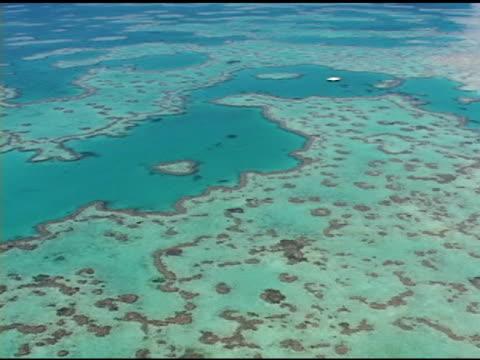 wielka rafa barierowa - krajobraz morski filmów i materiałów b-roll