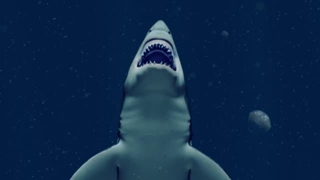 grande squalo bianco che nuota verso l'alto per catturare una preda - fauna selvatica video stock e b–roll