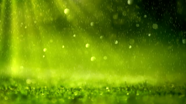 Green Background (Loopable) Close-Up summer background stock videos & royalty-free footage