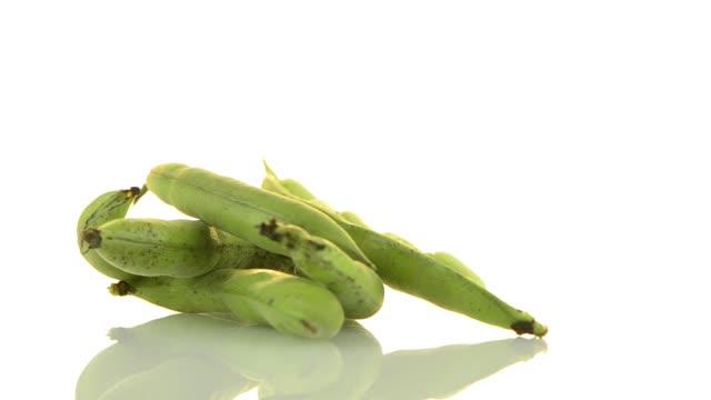 green beans - white background стоковые видео и кадры b-roll