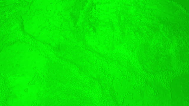 Green Bubbling Water-Loopable video