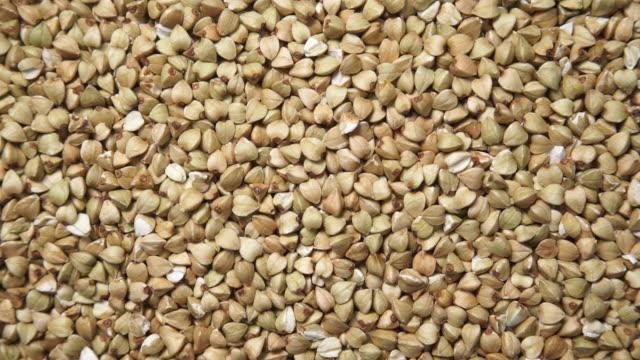 vídeos de stock, filmes e b-roll de groats verdes do trigo mourisco como o fundo - sem glúten