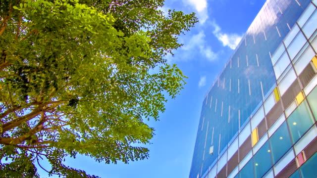 Green business city video