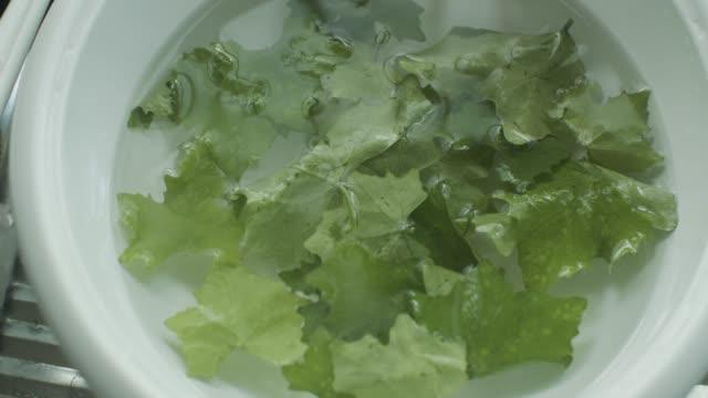 물에 녹색 콕 시 디 아. 음식을 만들기 위한 준비 - 아이비 스톡 비디오 및 b-롤 화면