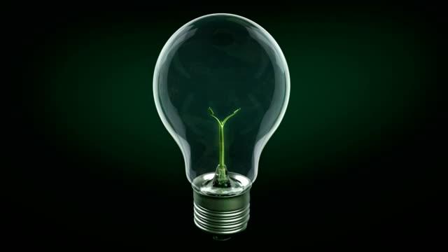 Green Energy Concept. Tree video