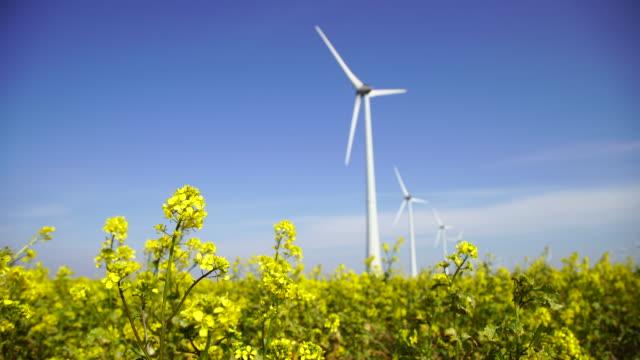 yeşil enerji - jeneratör stok videoları ve detay görüntü çekimi